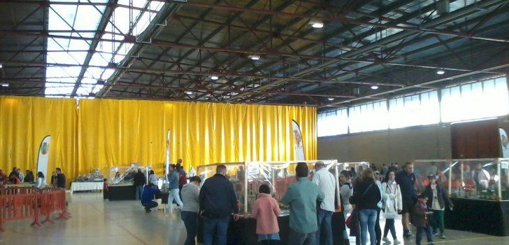 Vilafranca del Penedès acull amb èxit la 3a Fira lúdica i del col·leccionisme de Playmobil solidària amb la FEPCCAT