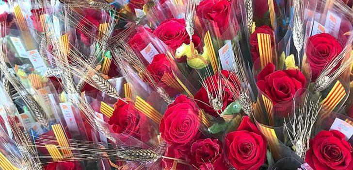 [GALERIA] Diada festiva de Sant Jordi a les entitats membres malgrat l'amenaça de la pluja
